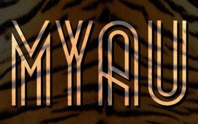 Entrevistamos a la organización del MYAU'14